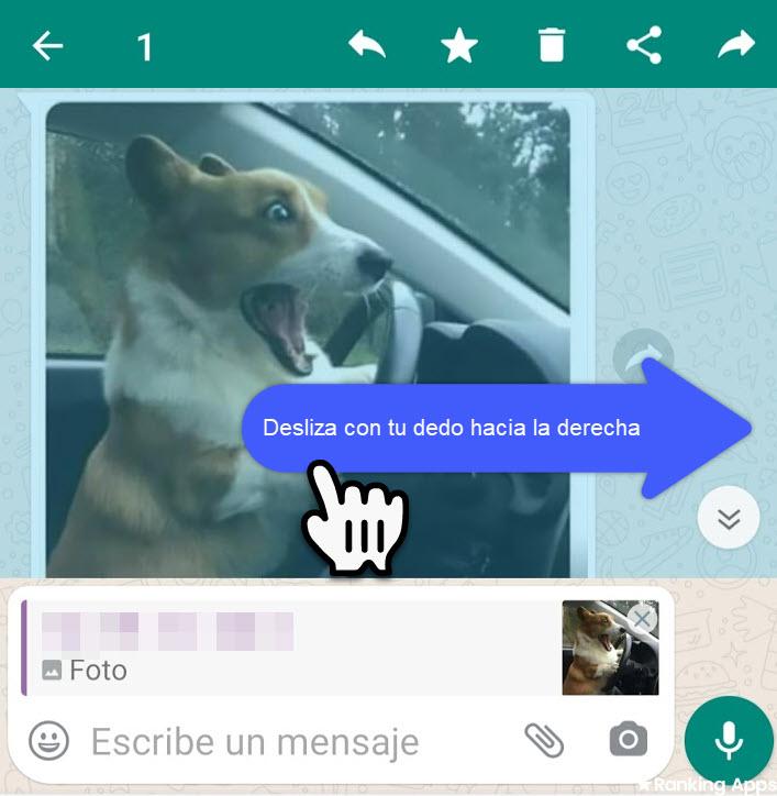 Truco para responder mensaje de WhatsApp, deslizar con el dedo el mensaje hacia la derecha